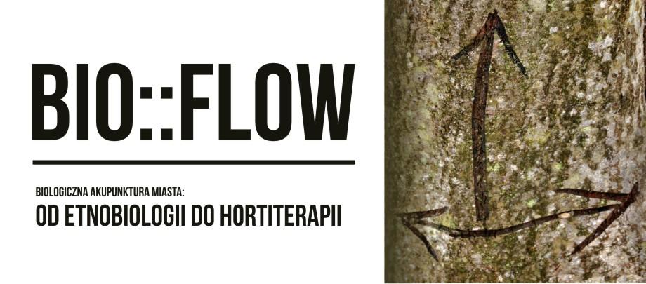 bioflowslayer